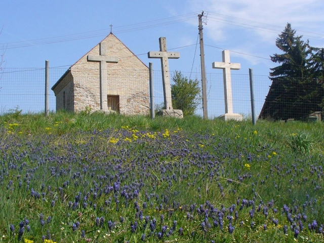 Gyöngyikevirágzás a felújított kápolnánál Barnai Viola fotója