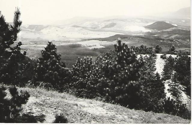 Nagykovácsi. A Nagyszénási turistaház környéke. Képeslap. Fotó: Pásztory Lóránt  HDt