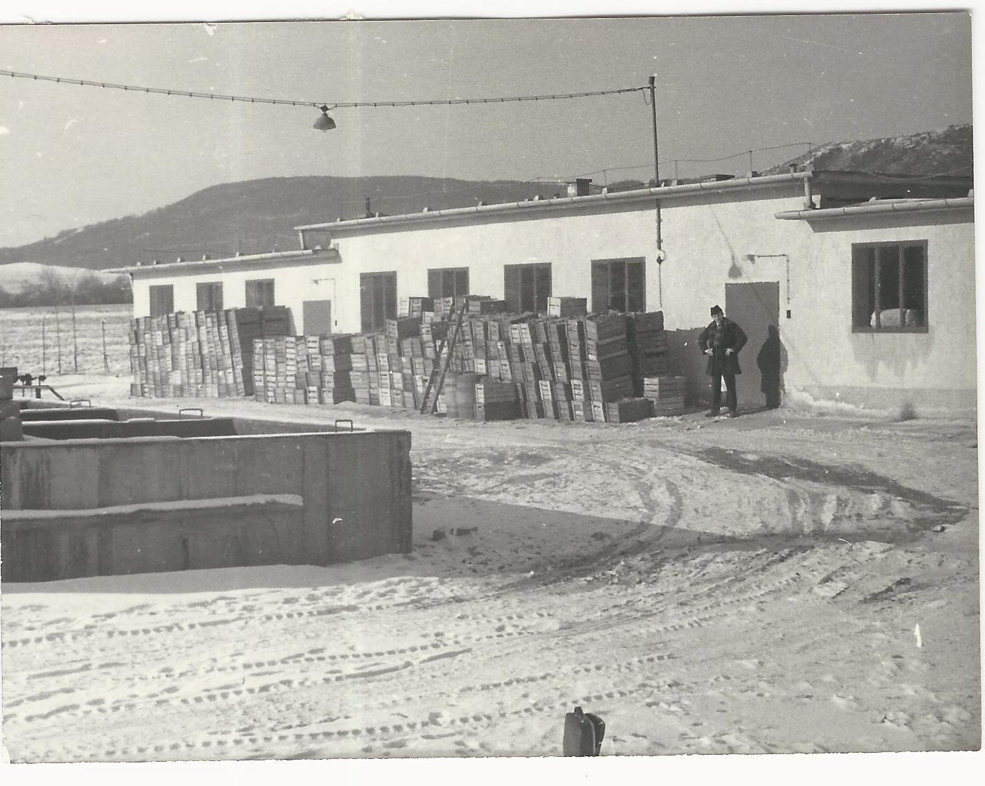 A Savanyító épülete mögötte a Nagy-Szénás Községi Krónika 1968