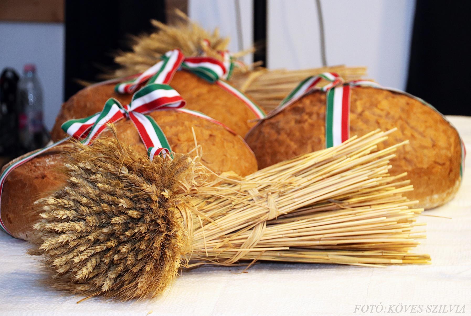 Az ünnepi kenyér 2018. augusztus 20.