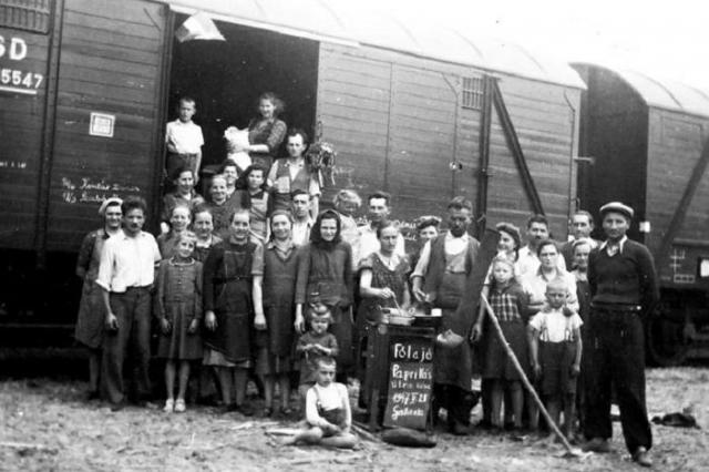 """1947. május 21. A Felvidéki magyarok kitelepítése """"lakosságcsere"""""""